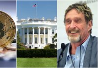 Daily crypto: Prices show mixed numbers and John McAfee is running for president
