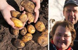"""De vill hajpa potatisen: """"Som vi väljer vin"""""""