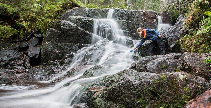Höga Kustenleden lockar vandrare. Och de senaste sex åren har besökarna till Höga Kusten ökat stadigt.