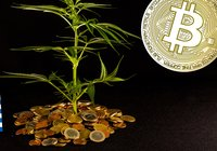 Greek billionaire launches cryptocurrency – backed by cannabis
